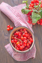 Viburnum in wooden bowl on a table Stock Image