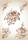 Victorian floral design elements vector vintage for Royalty Free Stock Photo