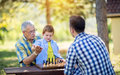 Victory in chess game Royalty Free Stock Photo