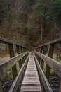 Vieille passerelle en bois avec forest foliage in background Image stock