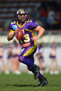 Vienna Vikings vs. Carinthian Black Lions Royalty Free Stock Photo