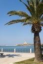Vieste (Gargano, Apulia) lighthouse from park Royalty Free Stock Photo