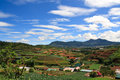 Vietnam Farmland Stock Images