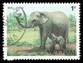 Vietnam stamp Royalty Free Stock Photo