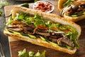 Vietnamese Pork Banh Mi Sandwich Royalty Free Stock Photo