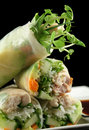 Vietnamese Rice Paper Rolls 3 Stock Photography