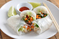Vietnamese spring rolls with lettuce Stock Images