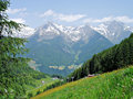 View of the alps on southside zillertal in south tyrol italy forests and flower meadows peaks and in deep ahrntal Royalty Free Stock Photo