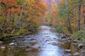 River in the Smoky Mountains Royalty Free Stock Photo