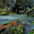 View beautiful autumn creek czech saxony switzerland panoramic picture Stock Photo
