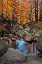 View beautiful autumn mountain creek Stock Photo