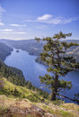 A view of a beautiful fiord british columbia canada hiking trail at gowlland tod provincial park victoria Royalty Free Stock Photo