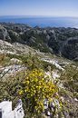 View from biokovo mountain national park to the adriatic sea Royalty Free Stock Images