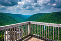 View of the Blackwater Canyon from Lindy Point, Blackwater Falls Royalty Free Stock Photo