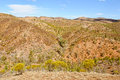View from the Bunyeroo Valley Lookout - Wilpena Pound Royalty Free Stock Photo