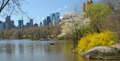 View of central park of the lake Royalty Free Stock Photo
