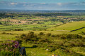 View from Crook Peak Somerset Royalty Free Stock Photography