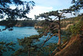 View from deception pass state park washington the trail going down to the beach at Royalty Free Stock Image
