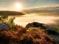 View into deep misty valley over tufts of heather. Hill peaks in  creamy fog Royalty Free Stock Photo
