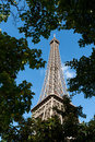 View of Eiffel tower through trees Royalty Free Stock Image