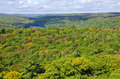 View Of Fall Colors From Dorse...