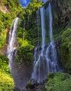 Sekumpul Waterfall in summer