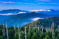 View of fog in the Smokies from Clingman's Dome Observation Towe Royalty Free Stock Photo