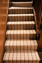 View from the foot of a modern carpeted staircase Royalty Free Stock Images