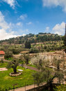 View of the Garden in Jerusalem Stock Photography