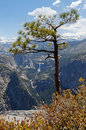 View from glacier point road towards half dome and vernal and nevada falls Stock Image