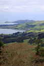 The view going up to larnach castle in dunedin new zeal zealand Royalty Free Stock Photography