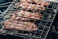 View of gourmet juicy meat cooking on grill Royalty Free Stock Photo