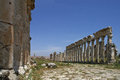 View in the Great Colonnade of Apamea ancient city in Syria Royalty Free Stock Photo
