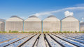 View for greenhouse with blue sky Royalty Free Stock Photo