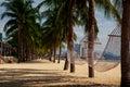 view of hammocks across palm trees on sand beach of resort city Royalty Free Stock Photo