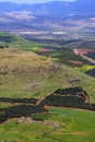 View of Israel Royalty Free Stock Photo