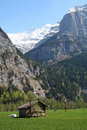 View from lauterbrunnen valley in switzerland at the famous mountain the jungfrau swiss seen with meadow and hut cabin Royalty Free Stock Photos