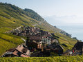 View in Lavaux Towards Montreux Royalty Free Stock Photography