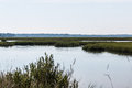 View of marshlands at pleasure house point in virginia beach natural area Stock Photo