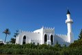View of the mosque and gardens with palm tree to the rear marbella malaga province andalusia spain western europe Stock Photography