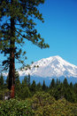 View of Mount Shasta Royalty Free Stock Photo