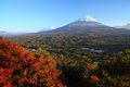 View of mt fuji with aokigahara forest in autumn yamanashi japan Royalty Free Stock Photo