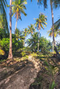 View of nice tropical beach with some palms around. Koh Laoya Sea of Thailand Royalty Free Stock Photo