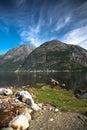 View in norwegian fjord Stock Photo