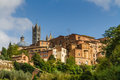 View of old buildings in siena siena tuscany italy with blue sky Stock Images