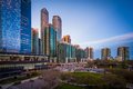 View of Olympic Park and modern buildings in downtown Toronto, O Royalty Free Stock Photo
