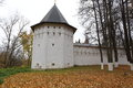 A view of one of the towers Savvino-Storozhevsky Monastery, Russia Royalty Free Stock Photo