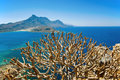 The view over the shrub of Gramvousa, Crete, Greece Stock Photo