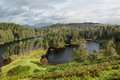View over Tarn Hows in English Lake District Royalty Free Stock Images
