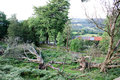 View over a working farms after a storm has brought down trees Royalty Free Stock Photo